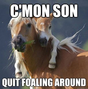 C'mon Son - Quit Foaling Around
