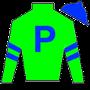 Loooch Racing Stable Inc. Silks
