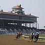 Ellis Park Race Course in Henderson, Kentucky