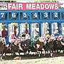 Fair Meadows