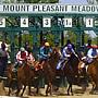 Mount Pleasant Meadows