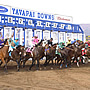 Yavapai Downs at Prescott Valley