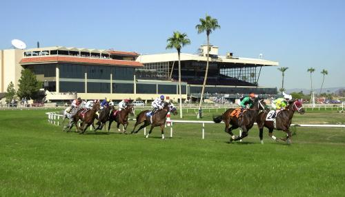 Turf Paradise Race Track